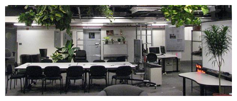 Interior Planting Image